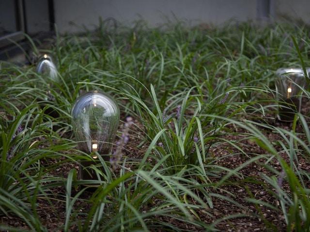 verlichting tuinverlichting