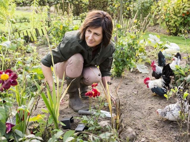 Laurence Machiels tuin bloemen planten kippen
