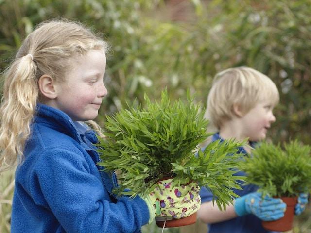 kinderen planten tuin