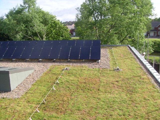 groendak dak zonnepanelen